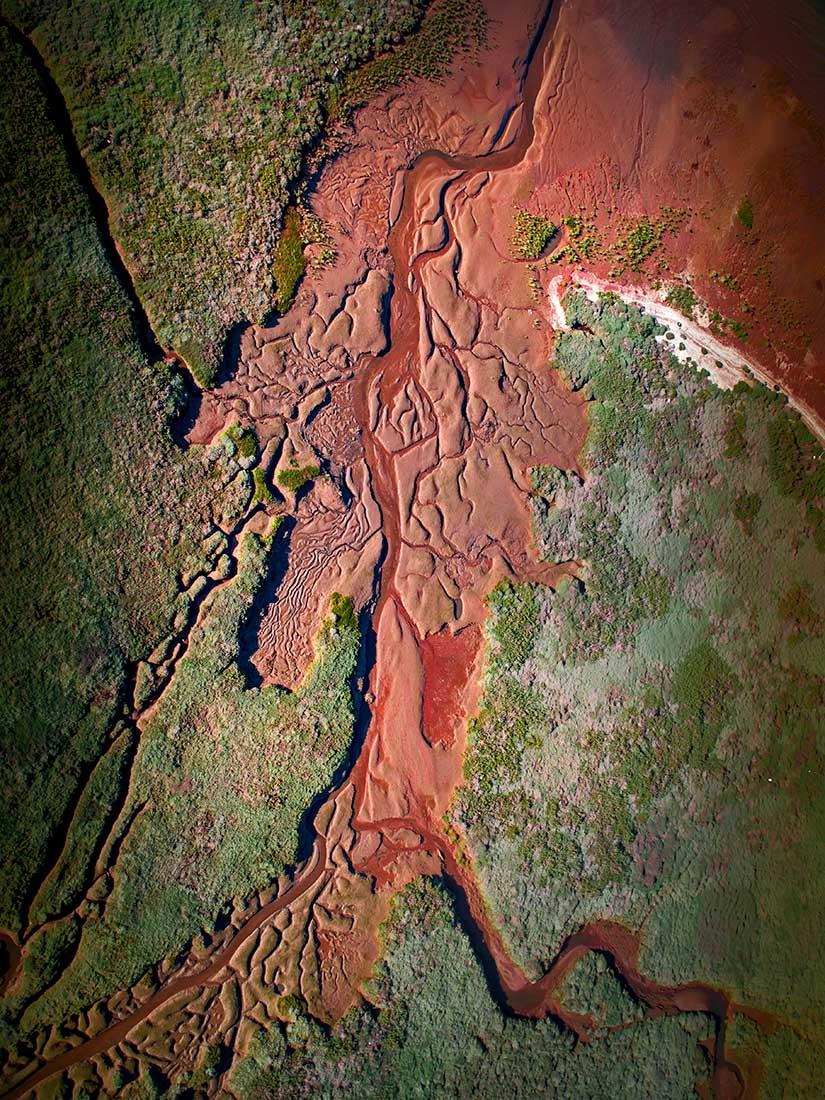 fotografia-aerea-con-dron-phantom-4-pro-selva